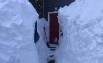 渥太华停电、LRT停运、驾雪地车惨死!破纪录大雪封城,整个加拿大都不好了。。。