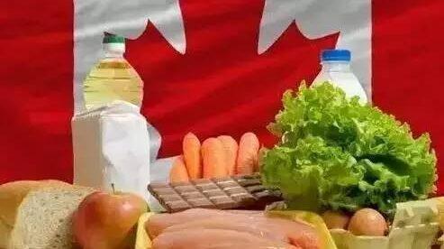 中国VS加拿大 这就是我一直留在加拿大的理由