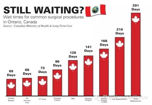 看完Zootopia,必须吐槽下:加拿大简直就是个树懒的国家!