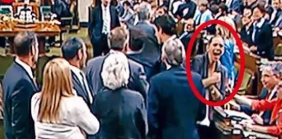 美女议员流泪控诉:胸部被特鲁多撞的很疼!