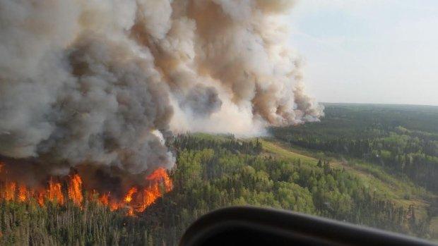 林火再度失控 野火总面积扩至42万公顷