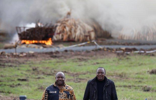 kenya-wildlife1
