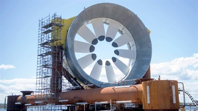 加拿大芬迪湾潮汐发电到底有多大潜力
