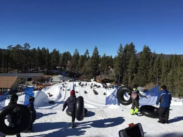 中国留学生在美国滑雪不慎撞树身亡
