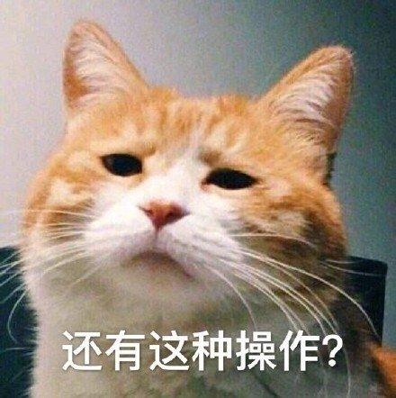 Image result for 难以置信 表情包