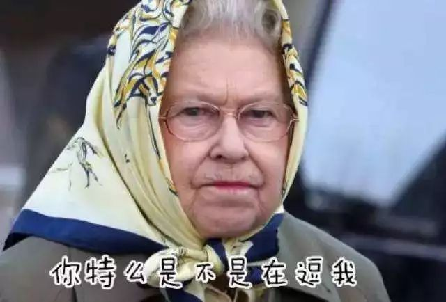一个包含英国女王出行绝密信息的U盘失踪后